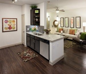 2 Bedroom Apartment Rental in Tomball, Texas